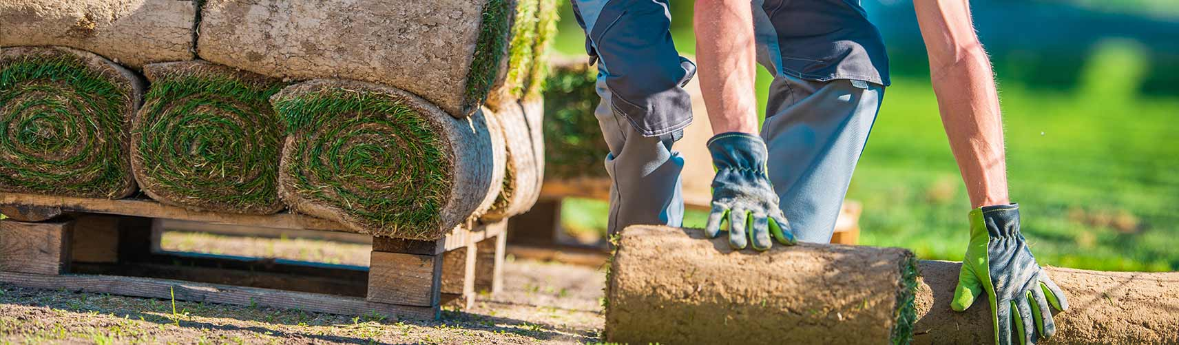 Champaign Landscaping Company, Landscaper and Lawn Care Services